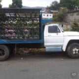 Foto Camion Ford 600