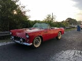 Photo 1955 Ford Thunderbird